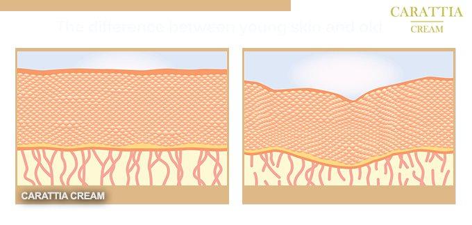 az alkalmazás hatásai Carattia Cream